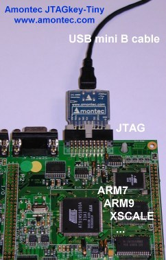 Article Images: jtagkey-tiny-board-text.jpg